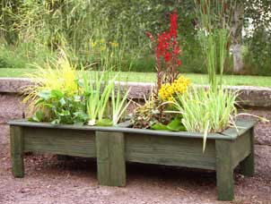 Pond Water Plants Patio Aquatic Planters For Pond Water Plants